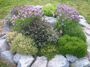 Stone-sided raised bed for herb garden